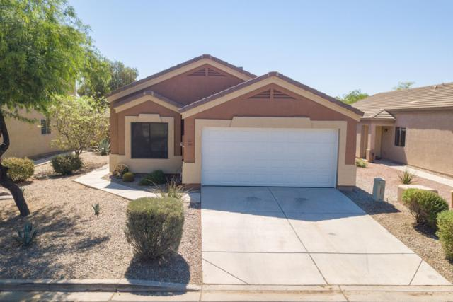 23843 N Wilderness Way, Florence, AZ 85132 (MLS #5942940) :: Openshaw Real Estate Group in partnership with The Jesse Herfel Real Estate Group