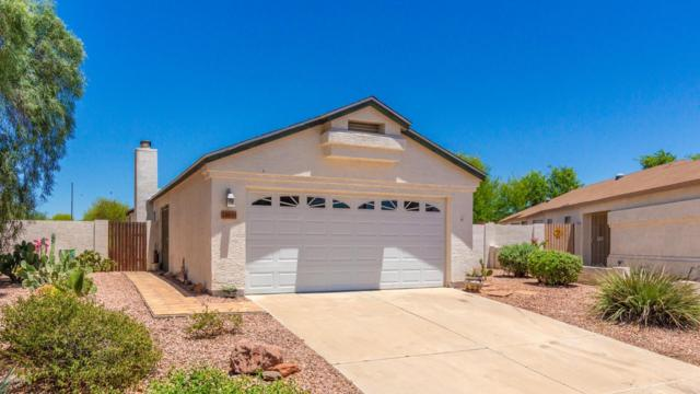 24843 N 40TH Avenue, Glendale, AZ 85310 (MLS #5942958) :: Openshaw Real Estate Group in partnership with The Jesse Herfel Real Estate Group