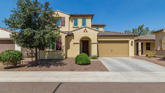 13174 N 93RD Avenue, Peoria, AZ 85381 (MLS #5942969) :: Santizo Realty Group