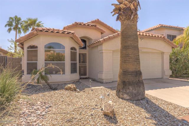 7537 W Kerry Lane, Glendale, AZ 85308 (MLS #5942978) :: REMAX Professionals