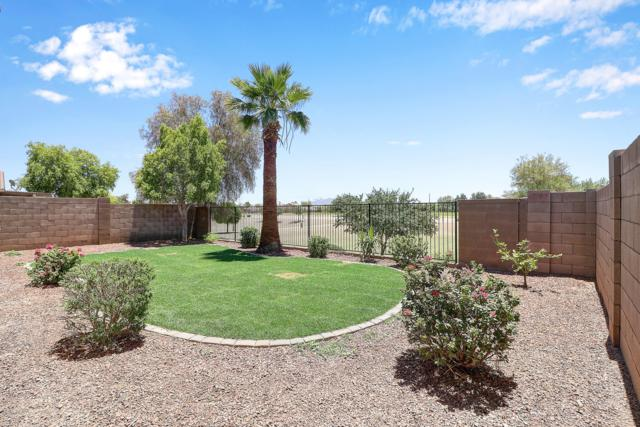 17849 W Tonto Street, Goodyear, AZ 85338 (MLS #5942991) :: Openshaw Real Estate Group in partnership with The Jesse Herfel Real Estate Group