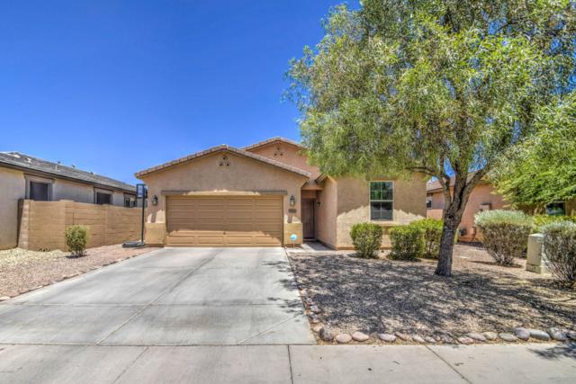 7722 W Shumway Farm Road, Laveen, AZ 85339 (MLS #5942993) :: Revelation Real Estate