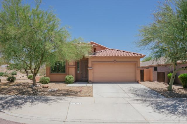 18159 W Desert Blossom Drive, Goodyear, AZ 85338 (MLS #5942999) :: Homehelper Consultants