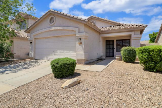 3806 W Blackhawk Drive, Glendale, AZ 85308 (MLS #5943000) :: Openshaw Real Estate Group in partnership with The Jesse Herfel Real Estate Group