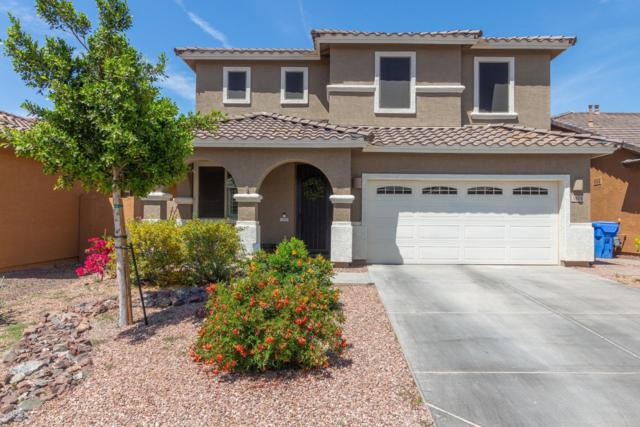3874 E Narrowleaf Drive, Gilbert, AZ 85298 (MLS #5943004) :: Revelation Real Estate