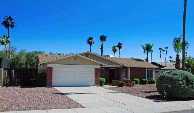 4916 E Pershing Avenue, Scottsdale, AZ 85254 (MLS #5943011) :: The Property Partners at eXp Realty