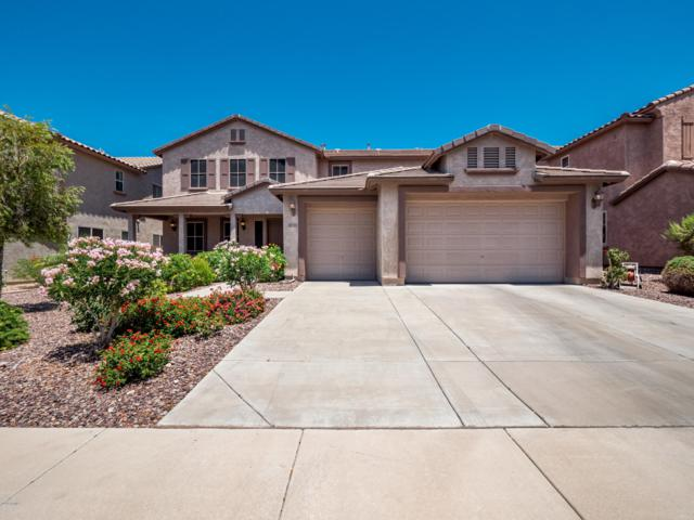 6142 W Montebello Way, Florence, AZ 85132 (MLS #5943075) :: Openshaw Real Estate Group in partnership with The Jesse Herfel Real Estate Group