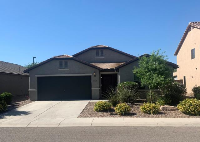 8062 W Pleasant Oak Way, Florence, AZ 85132 (MLS #5943078) :: Openshaw Real Estate Group in partnership with The Jesse Herfel Real Estate Group
