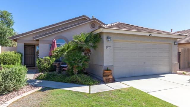 8172 W Mary Ann Drive, Peoria, AZ 85382 (MLS #5943134) :: The Laughton Team