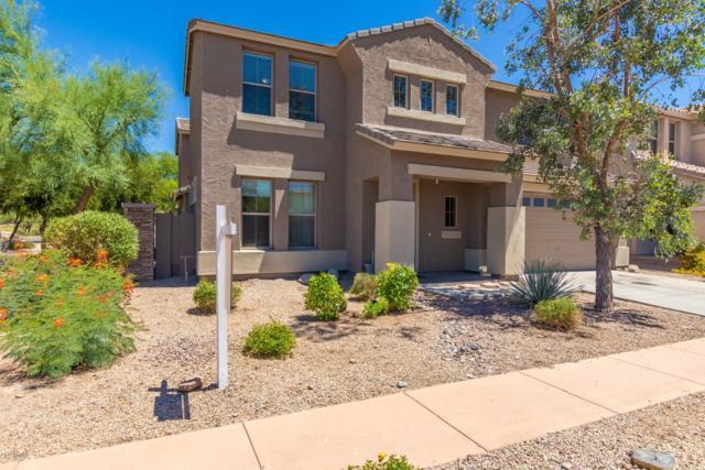 3122 W Via De Pedro Miguel, Phoenix, AZ 85086 (MLS #5943147) :: Revelation Real Estate