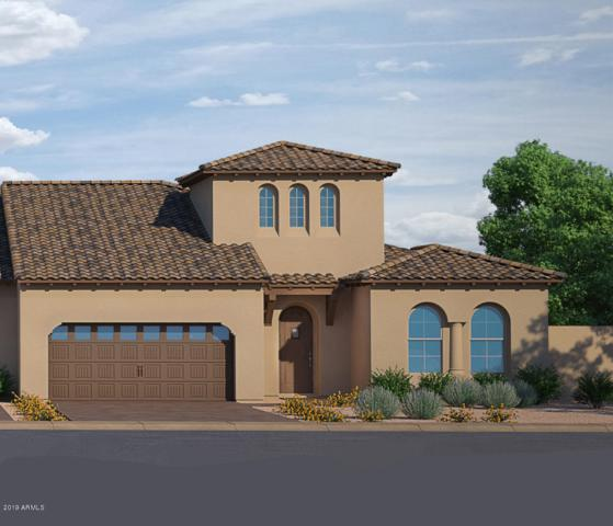 17955 W Sunward Drive, Goodyear, AZ 85338 (MLS #5943165) :: Homehelper Consultants