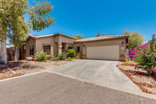 2626 E Riviera Drive, Chandler, AZ 85249 (MLS #5943236) :: The W Group