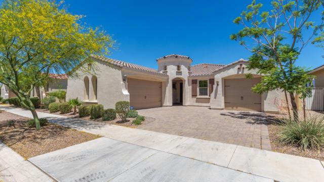10536 E Lincoln Avenue, Mesa, AZ 85212 (MLS #5943258) :: The Daniel Montez Real Estate Group