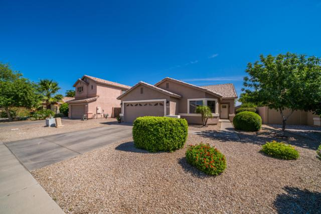 3720 E Red Oak Lane, Gilbert, AZ 85297 (MLS #5943266) :: Revelation Real Estate