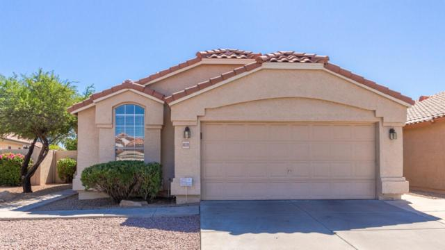 10339 N 58TH Lane, Glendale, AZ 85302 (MLS #5943271) :: The Property Partners at eXp Realty