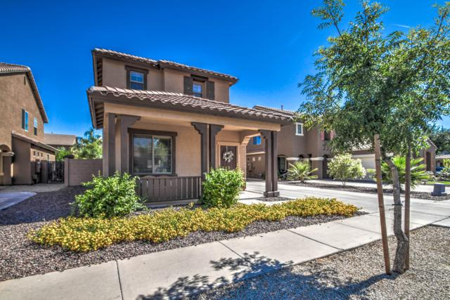 4443 E Oxford Lane, Gilbert, AZ 85295 (MLS #5943277) :: Openshaw Real Estate Group in partnership with The Jesse Herfel Real Estate Group