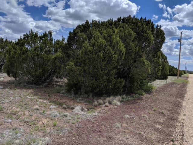 lot 367 Acr 3189, Vernon, AZ 85940 (MLS #5943286) :: Brett Tanner Home Selling Team