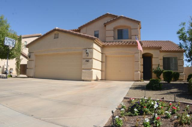 11221 E Stearn Avenue, Mesa, AZ 85212 (MLS #5943306) :: The Daniel Montez Real Estate Group