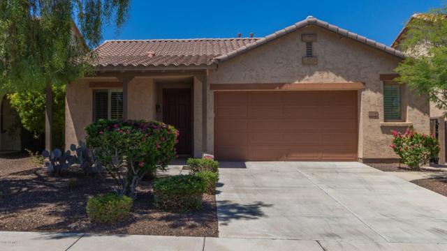 12748 W Chucks Avenue, Peoria, AZ 85383 (MLS #5943316) :: Riddle Realty