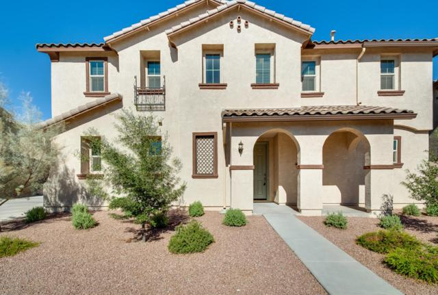 2945 S Colorado Street, Chandler, AZ 85286 (MLS #5943338) :: Openshaw Real Estate Group in partnership with The Jesse Herfel Real Estate Group