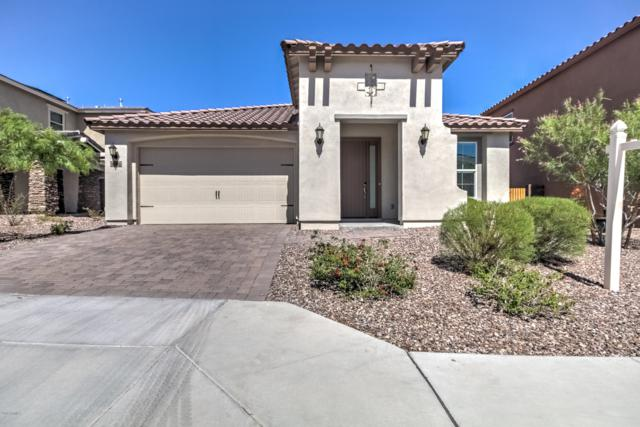 31995 N 132nd Avenue, Peoria, AZ 85383 (MLS #5943361) :: Kortright Group - West USA Realty