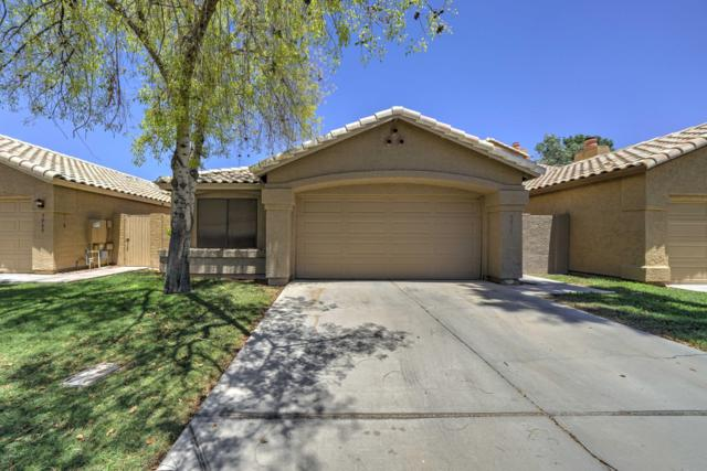 5958 W Drake Court, Chandler, AZ 85226 (MLS #5943378) :: Kortright Group - West USA Realty