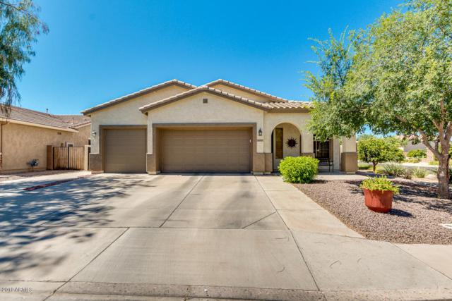 3605 E Palmer Street, Gilbert, AZ 85298 (MLS #5943385) :: Openshaw Real Estate Group in partnership with The Jesse Herfel Real Estate Group