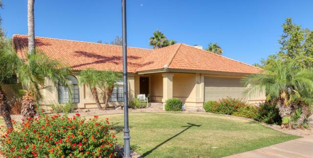 431 E Moore Avenue, Gilbert, AZ 85234 (MLS #5943413) :: Revelation Real Estate
