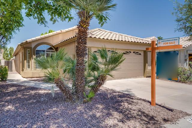 652 N Terrace Road, Chandler, AZ 85226 (MLS #5943419) :: Kortright Group - West USA Realty