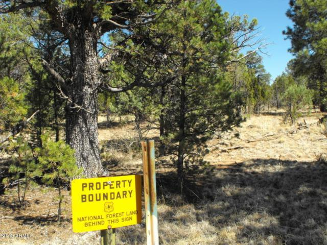 6479 Whispering Pine Drive, Happy Jack, AZ 86024 (MLS #5943420) :: Lucido Agency