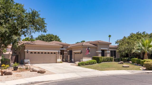 380 E Benrich Drive, Gilbert, AZ 85295 (MLS #5943441) :: Revelation Real Estate