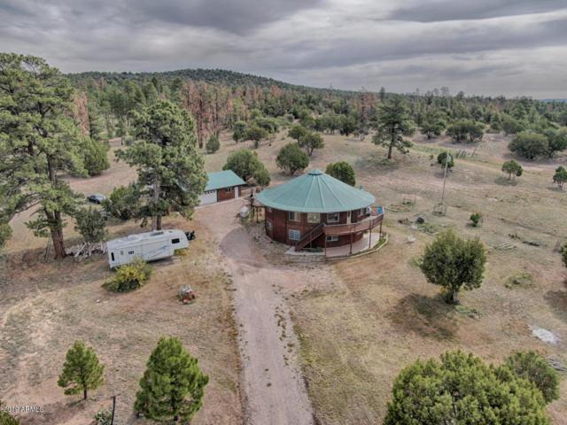 1587 Xavier Road, Pinedale, AZ 85934 (MLS #5943442) :: The Property Partners at eXp Realty