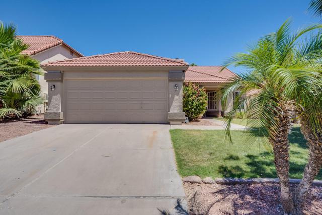 3236 E Silverwood Drive, Phoenix, AZ 85048 (MLS #5943447) :: Power Realty Group Model Home Center