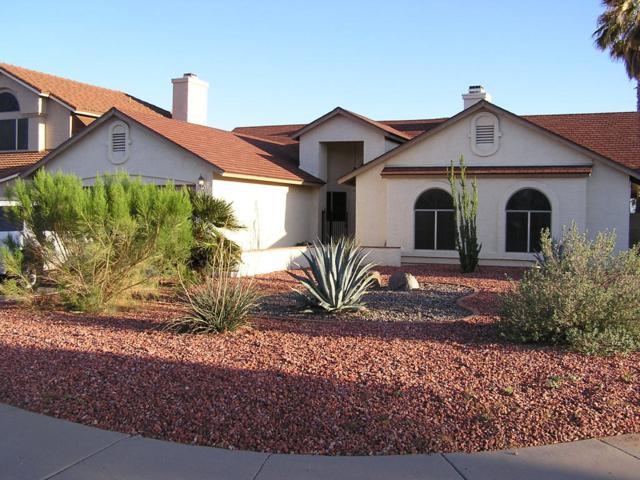 4313 E Briarwood Terrace, Phoenix, AZ 85048 (MLS #5943450) :: Power Realty Group Model Home Center