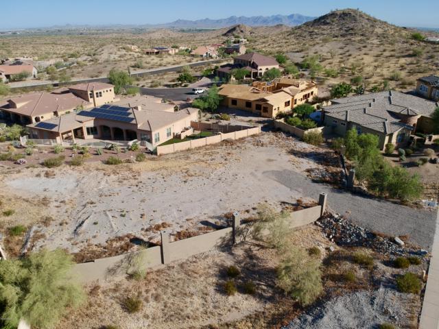 11168 Quinn Drive, Goodyear, AZ 85338 (MLS #5943454) :: Homehelper Consultants