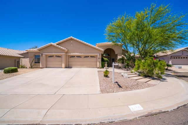 3070 E Dry Creek Road, Phoenix, AZ 85048 (MLS #5943469) :: Power Realty Group Model Home Center
