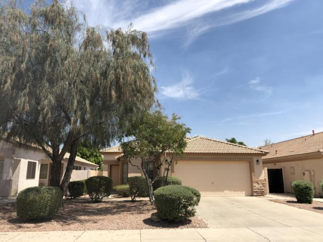 10388 W Tonopah Drive, Peoria, AZ 85382 (MLS #5943486) :: Kortright Group - West USA Realty