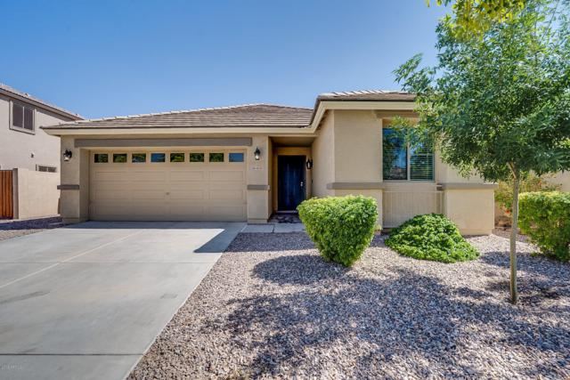 4035 E Maplewood Street, Gilbert, AZ 85297 (MLS #5943494) :: Revelation Real Estate