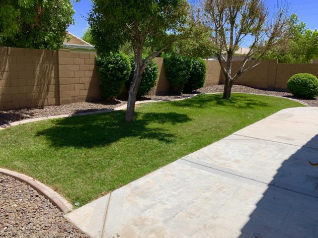 11308 W Hutton Drive, Surprise, AZ 85378 (MLS #5943509) :: Kortright Group - West USA Realty