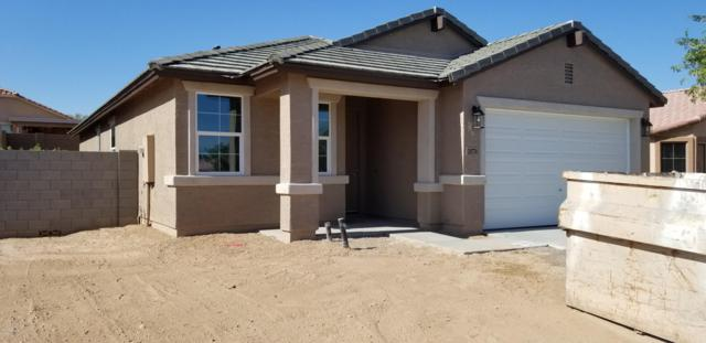 24774 W Wayland Drive, Buckeye, AZ 85326 (MLS #5943532) :: Riddle Realty