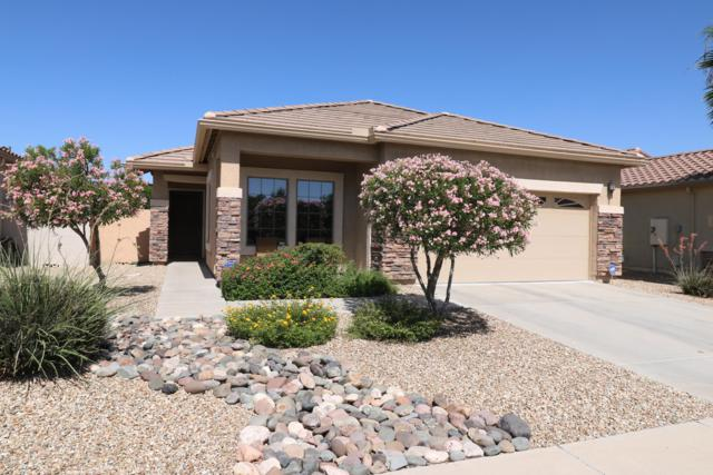 15974 N 177TH Drive, Surprise, AZ 85388 (MLS #5943546) :: Kortright Group - West USA Realty