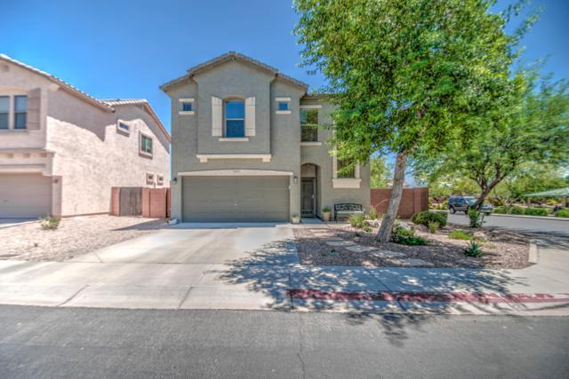 9905 E Edgewood Avenue, Mesa, AZ 85208 (MLS #5943547) :: Riddle Realty