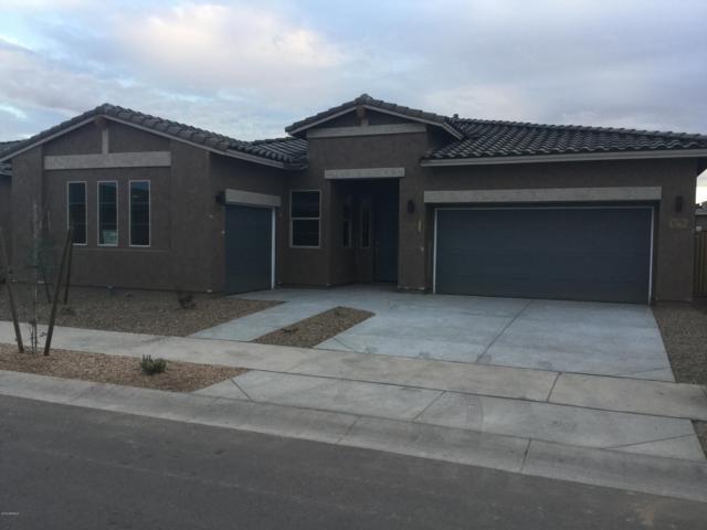 22975 E Via Del Oro, Queen Creek, AZ 85142 (MLS #5943552) :: The Pete Dijkstra Team