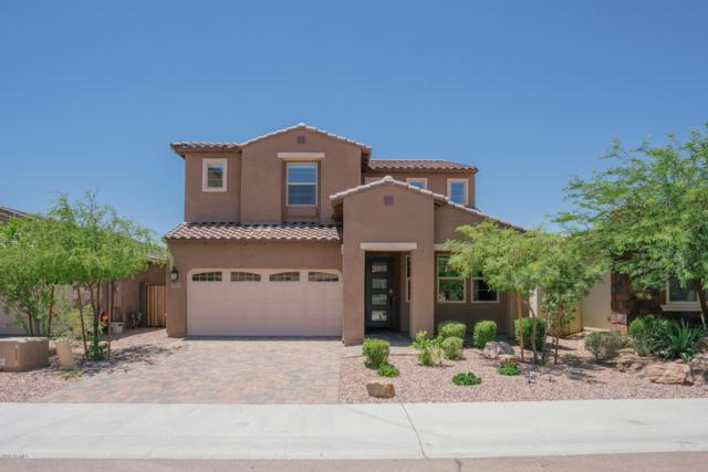 12767 W Caraveo Place, Peoria, AZ 85383 (MLS #5943566) :: Kortright Group - West USA Realty