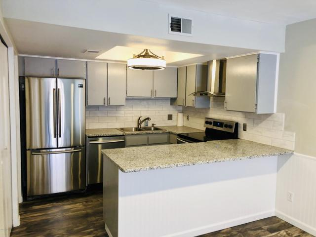 2146 E 10TH Street #4, Tempe, AZ 85281 (MLS #5943579) :: Homehelper Consultants