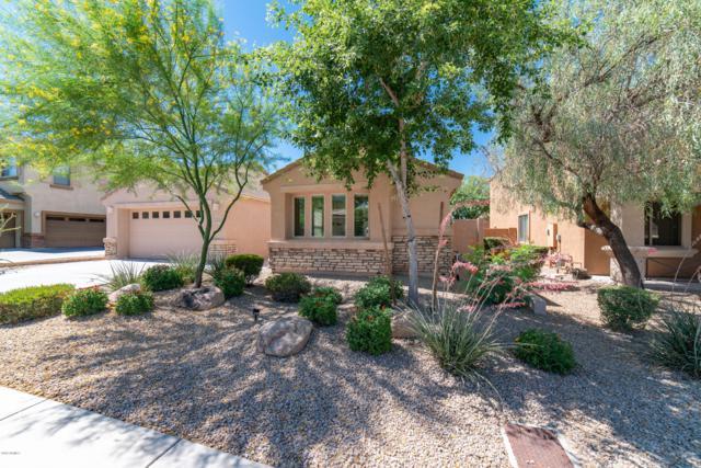 4019 E Casitas Del Rio Drive, Phoenix, AZ 85050 (MLS #5943581) :: The Carin Nguyen Team