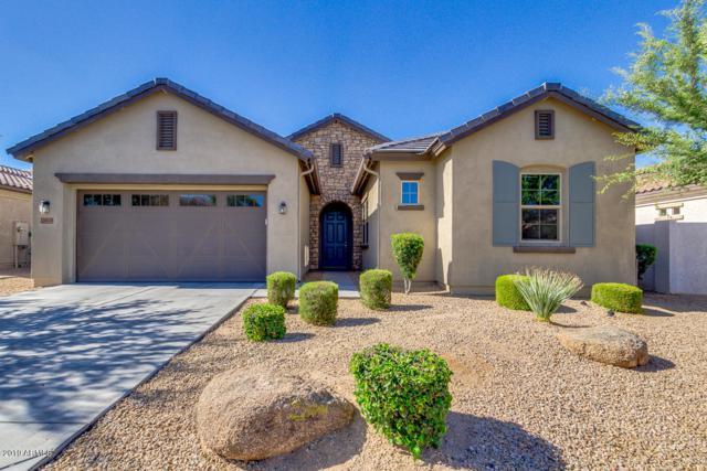 16174 W Monterosa Street, Goodyear, AZ 85395 (MLS #5943595) :: REMAX Professionals