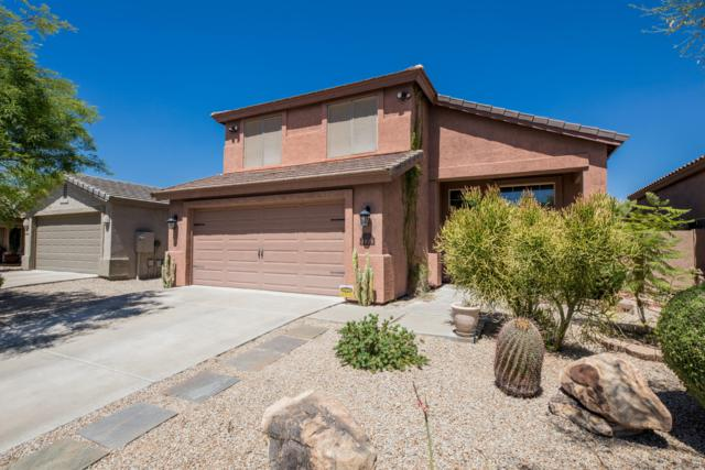 4535 E Cox Court, Cave Creek, AZ 85331 (MLS #5943601) :: The Laughton Team