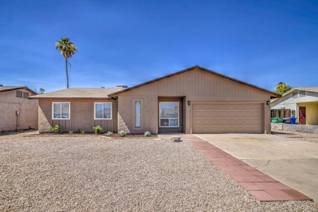 2134 E Jerome Avenue, Mesa, AZ 85204 (MLS #5943611) :: Revelation Real Estate