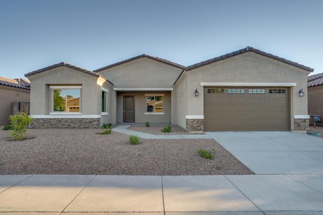 21543 E Puesta Del Sol, Queen Creek, AZ 85142 (MLS #5943642) :: The Daniel Montez Real Estate Group